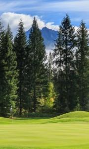 Golden Golf Club - Golf Map Cover